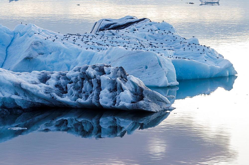Jokulsarlon glacial lagoon, Iceland