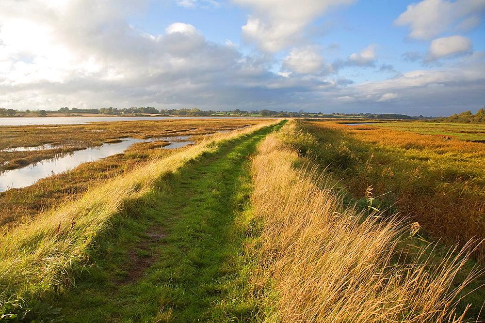 Riverside flood defence dyke footpath on River Deben, Ramsholt, Suffolk, England