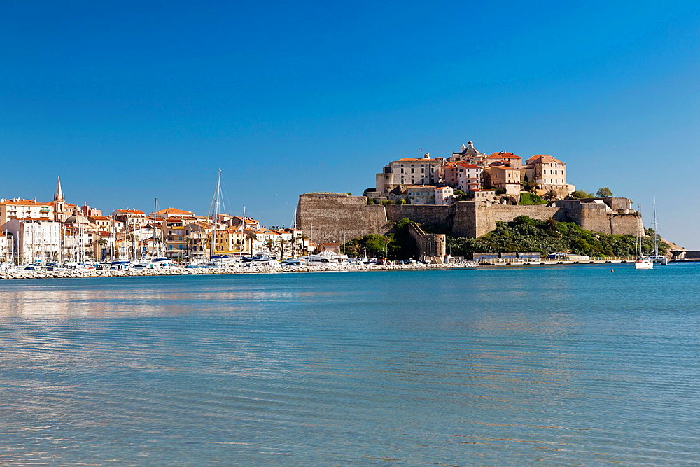 France, Corsica, Haute-Corse Department, La Balagne Region, Calvi, Port de Plaissance yacht harbor, with view of the Citadel from the Golfe de Calvi gulf