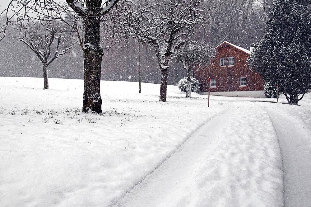 winter landscape, heavy snowfall, Promasens, Fribourg canton, Switzerland