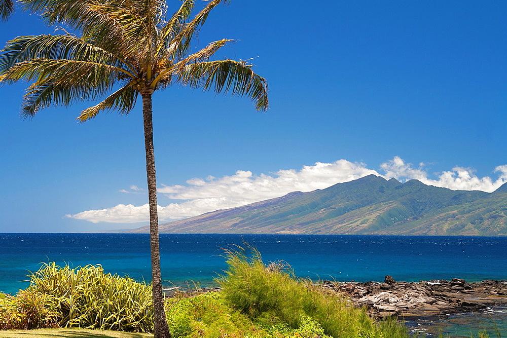 Beach, Maui, Hawai