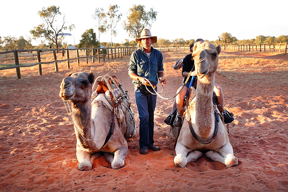 Camel riding, Central Australia