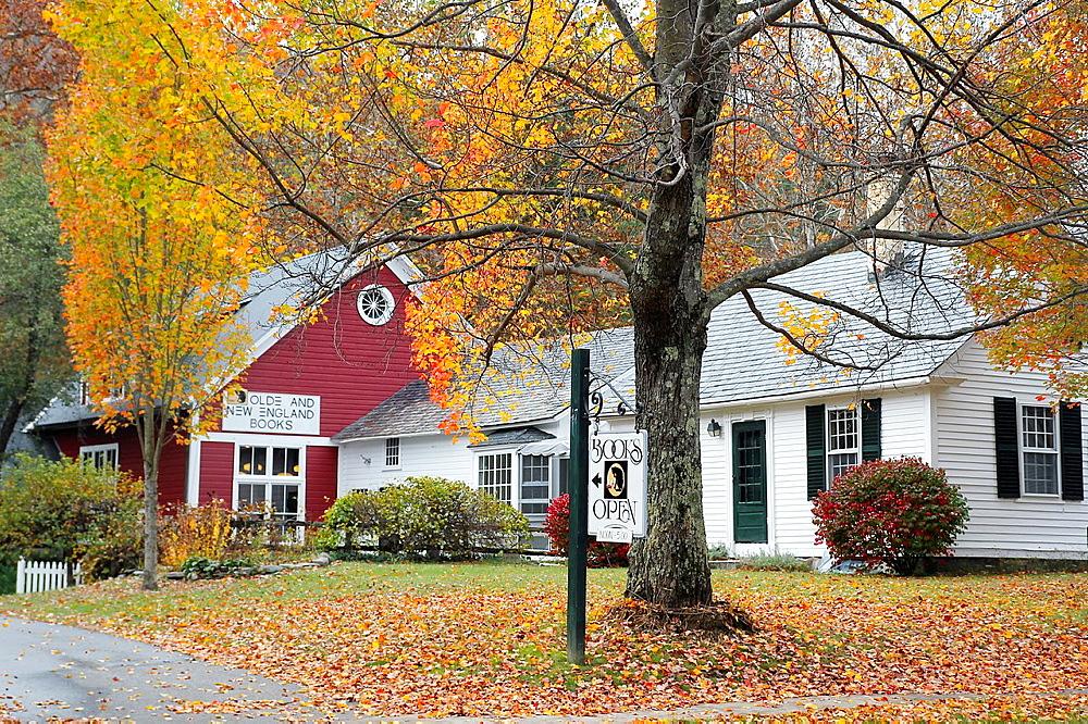 A bookstore in Newfane, Vermont
