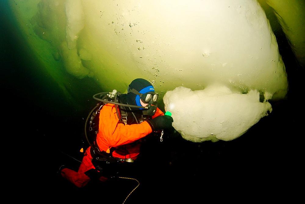 ice diving, Arctic, Russia, Russian north, Kareliya, White sea
