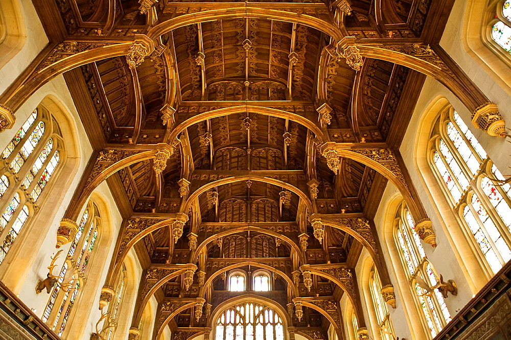 Ceiling of the Great Hall, Hampton Court Palace, Surrey, England, oak hammerbeam roof structure, stained glass windows, part of King Henry VIII's apartments, built 1531-1536