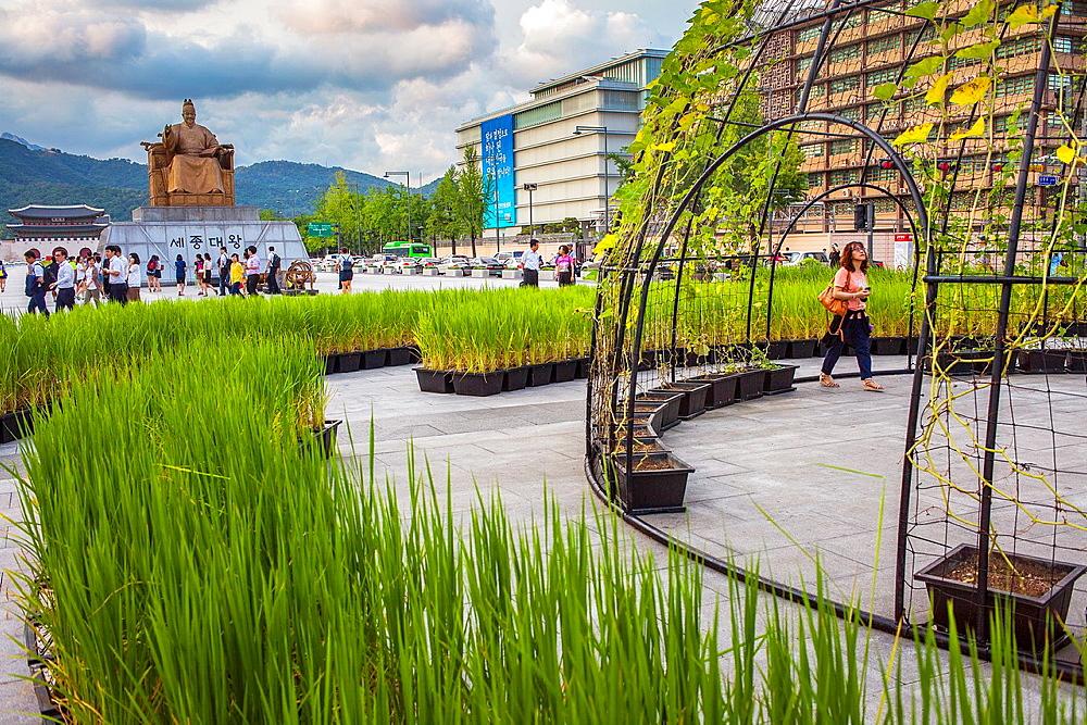 Garden at Gwanghwamun Square, in background Golden statue of King Sae Jong Dae, Seoul, South Korea