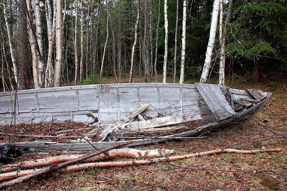 Wreck of a large wooden rowing boat. River Moaelven, Anundsjoe, Vaesternorrland, Sweden, Scandinavia, Europe
