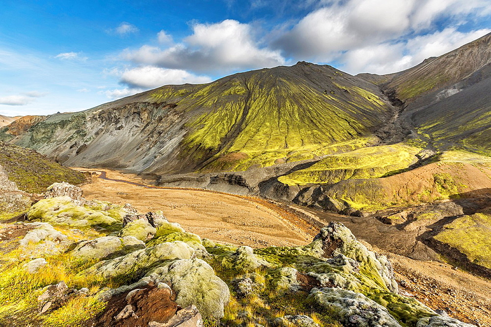 Lava and moss landscape, Landmannalaugar, Iceland Landmannalaugar- popular destination for hiking and camping with unusual geological elements such as multicolored rhyolite, geothermal pools and lava fields