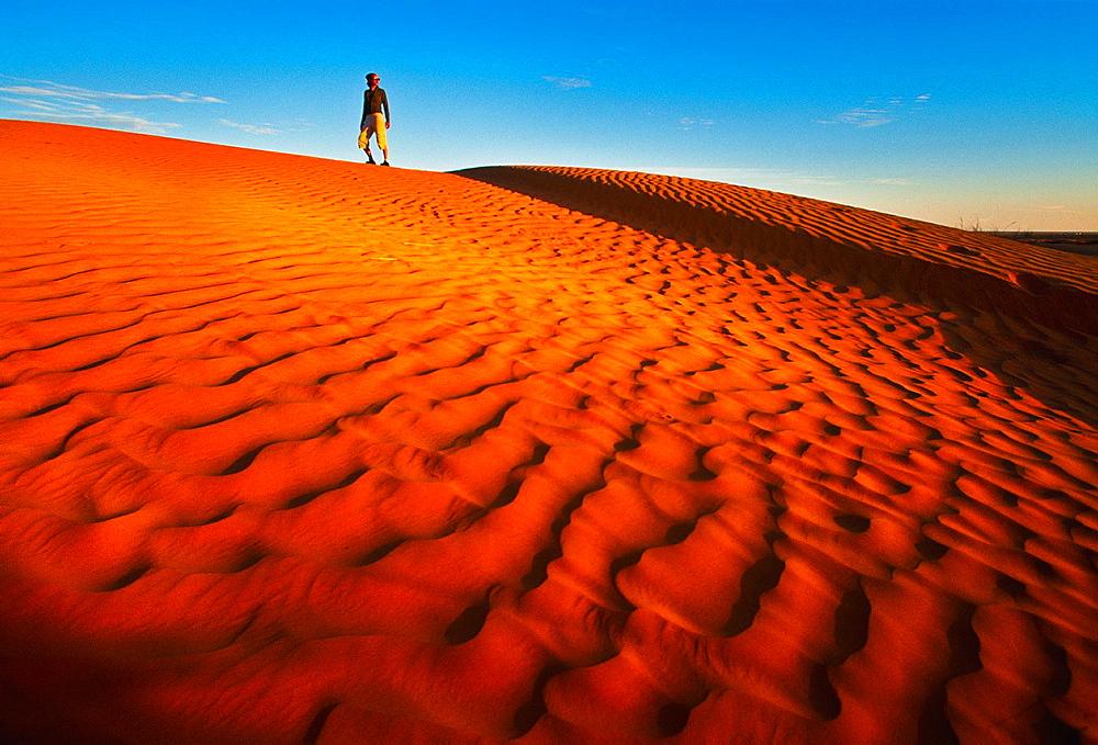 Dunes in Ksar Ghilane Sahara Southern Tunisia.