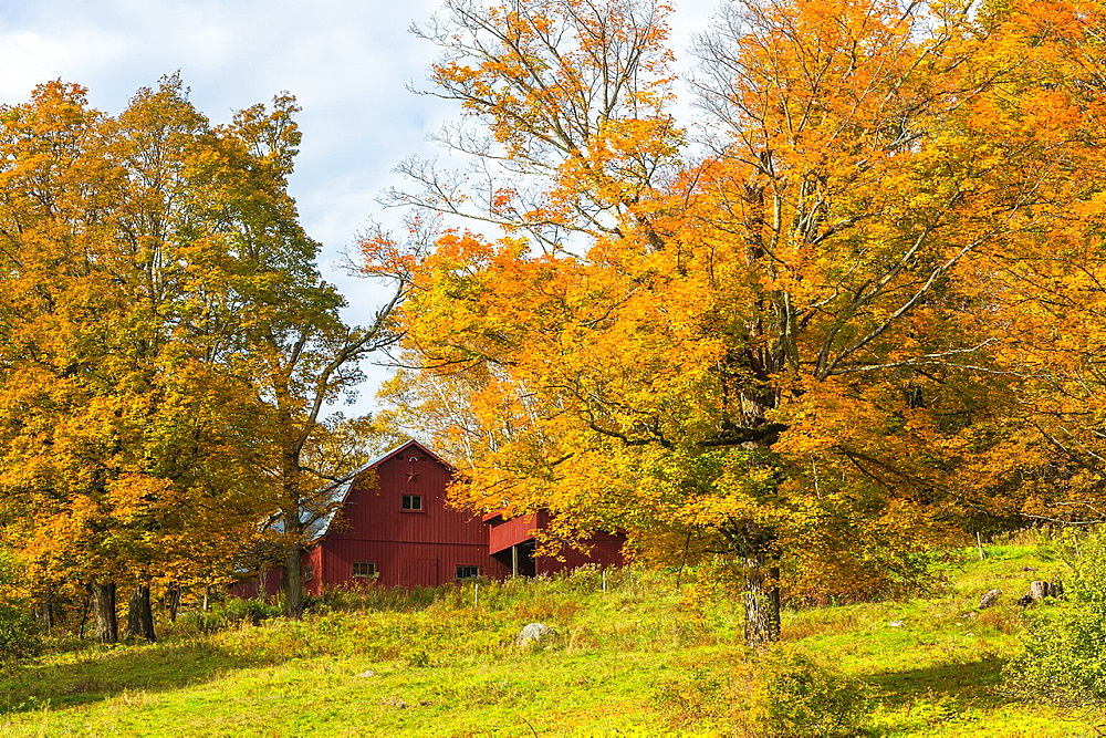 Red barn and colorful trees in autumn in Vermont, USA