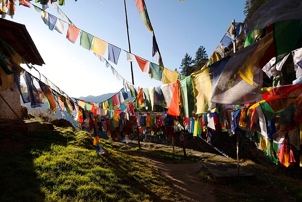 Prayer flags near the Taktsang Monastery Tiger's Nest, Paro Valley, Bhutan, Asia.