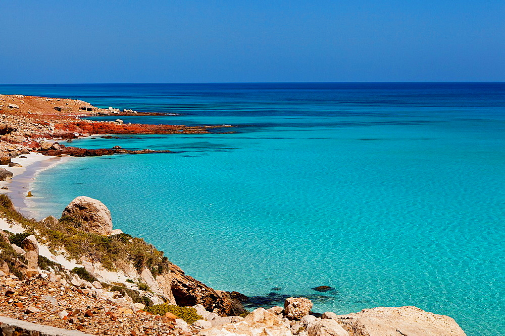 East coast, Socotra island, listed as World Heritage by UNESCO, Aden Governorate, Yemen, Arabia, West Asia.