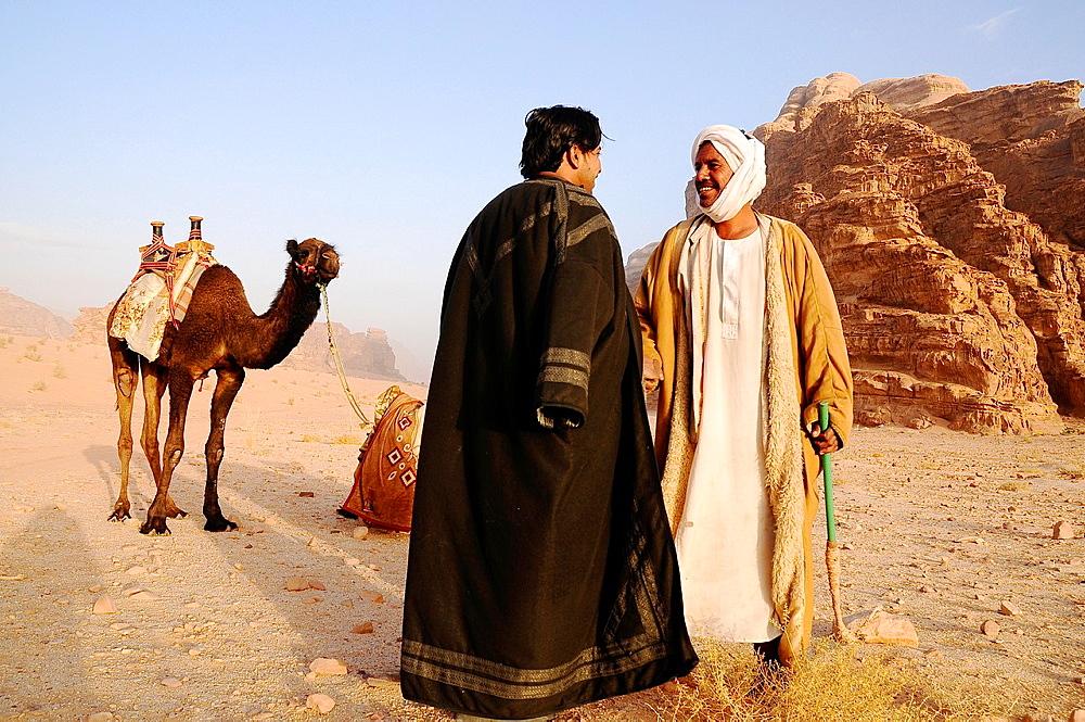 Beduin men with their camels, Wadi Rum desert, Jordan, Middle East.