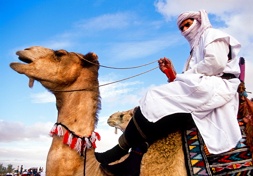International Festival of the Sahara Douz Southern Tunisia. - 817-426146