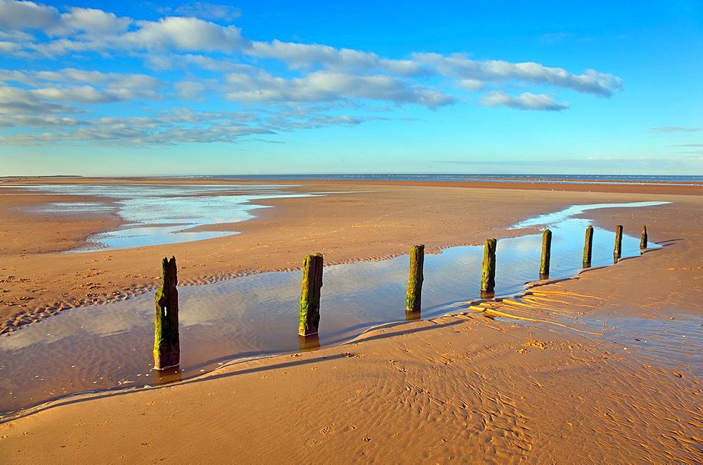 Brancaster beach old groynes North Norfolk UK Winter
