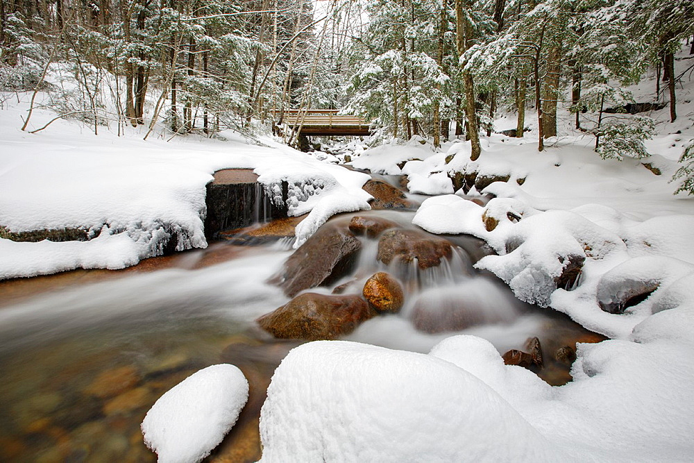 Franconia Notch State Park, Flume Brook in Flume Gorge in the White Mountains, New Hampshire USA