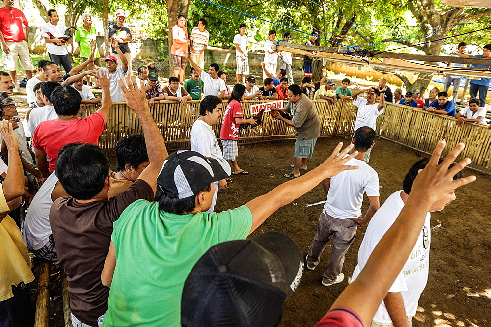 People betting before a cock fight, Puerto Princesa, Palawan, Philippines