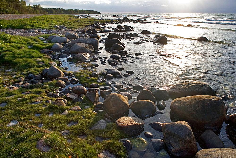 Stone beach on Baltic coast, Saaremaa island, Estonia - 817-42853