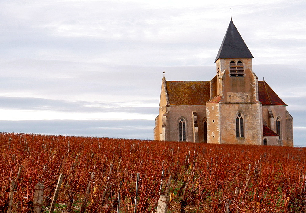 Tonw of France, Burgundy, Yonne, Prehy and its famous church lost in the vineyards