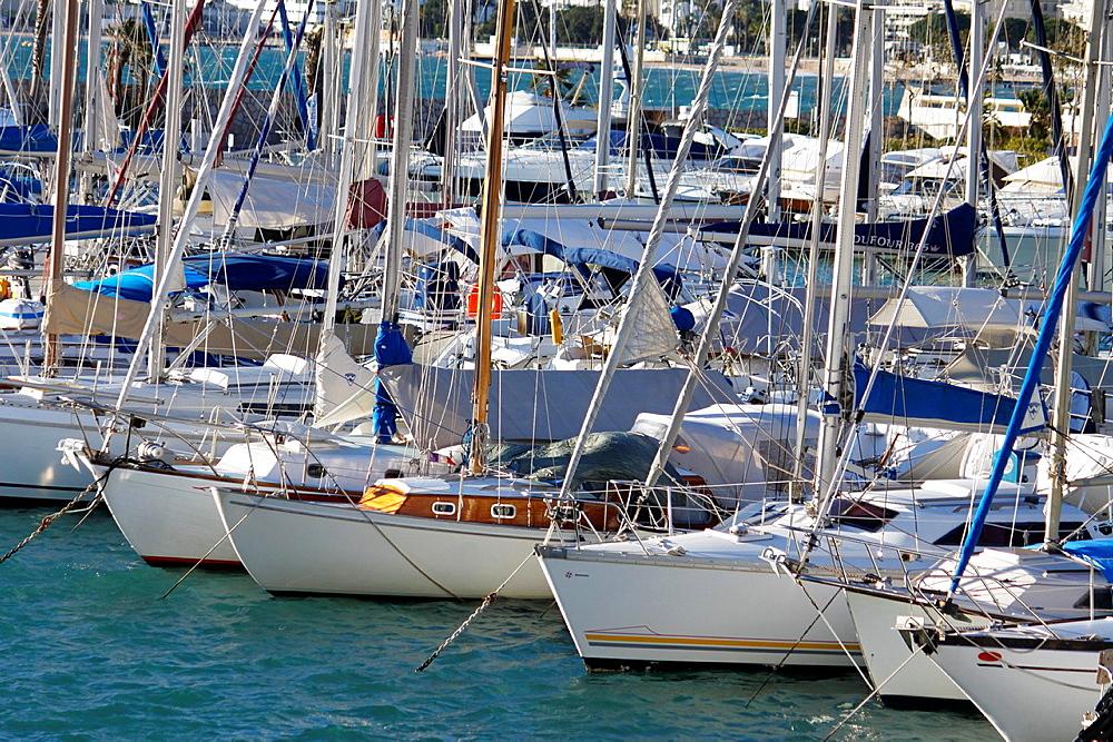 Sailboats docked, Cannes, Alpes-Maritimes, Provence-Alpes-Cote d'Azur, France.