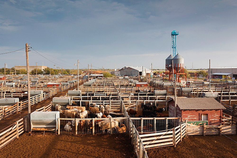 USA, Oklahoma, Oklahoma City, Oklahoma National Stockyards, elevated view of cattle pens