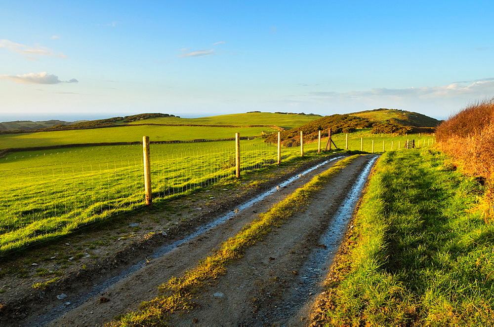Farm track through fields at Higher Warcombe near Ilfracombe, North Devon, England
