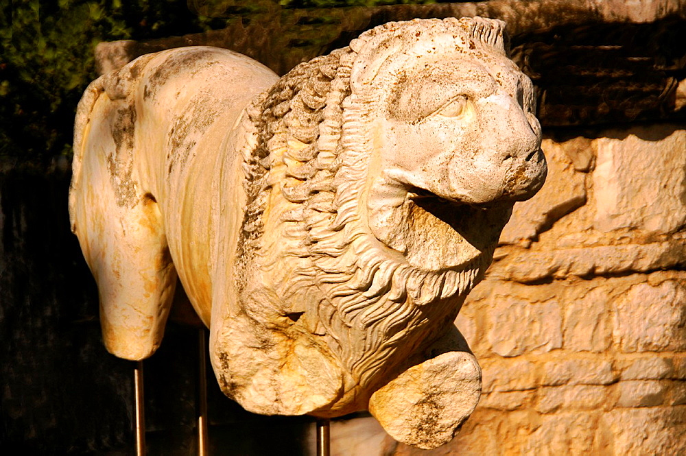 Turkey-Didim- Lion at the Apollo temple at Didymes.