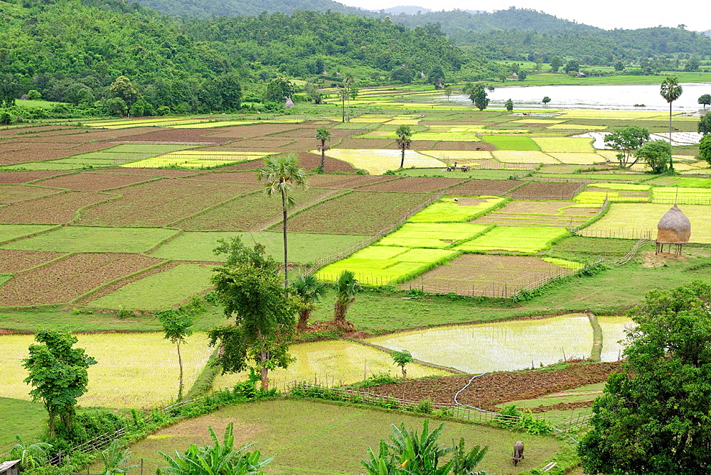 Thagara village Along the Irrawady river Sagaing Division Burma Republic of the Union of Myanmar.