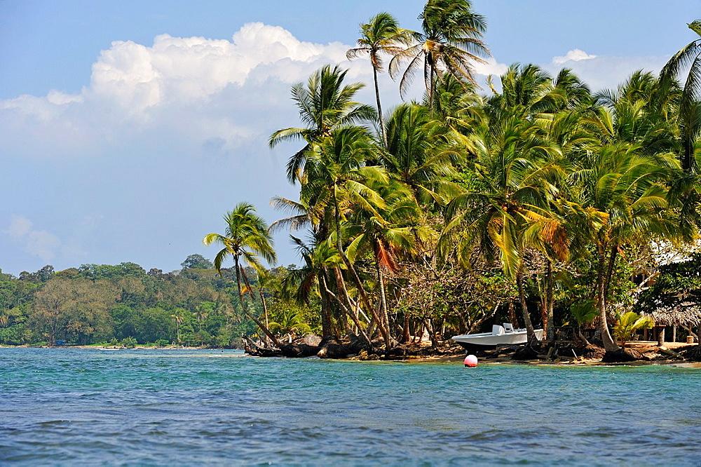 Boca Del Drago, Colon Island, Bocas Del Toro Archipelago, Republic Of Panama, Central America