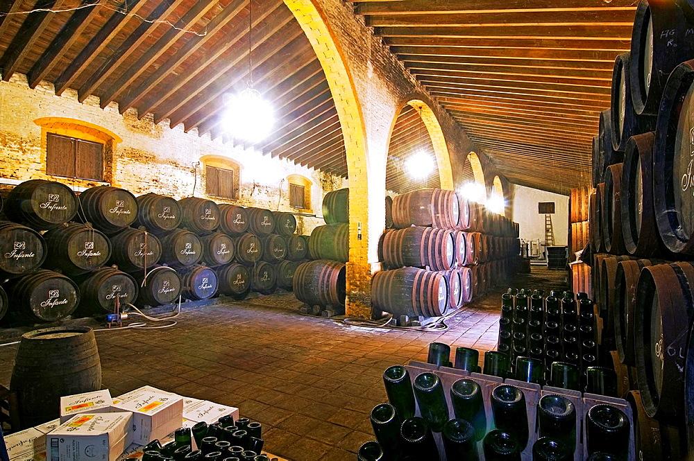 Winery Bodegas Infantes, La Palma del Condado, Huelva-province, Spain