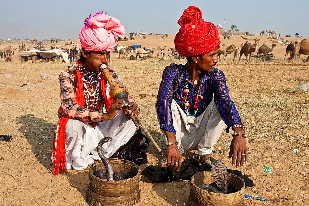 Snake Charmers, Pushkar Festival, Pushkar, Rajasthan, India - 817-434196