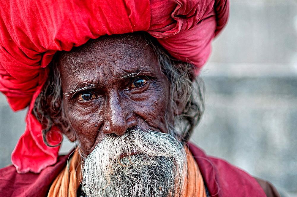 Elder shadu wearing a big turban Varanasi, Benares, Uttar Pradesh, India