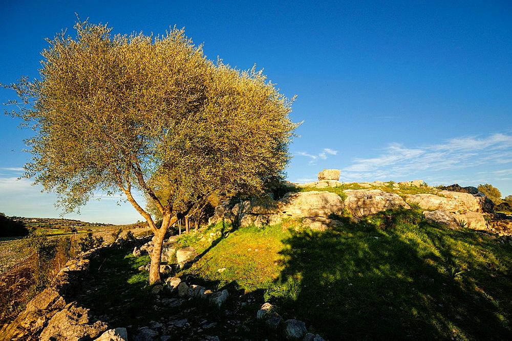 Talayotic site Son Fornes, Montuiri, C Talayotic period 1300-123 County Es Pla, Mallorca, Spain