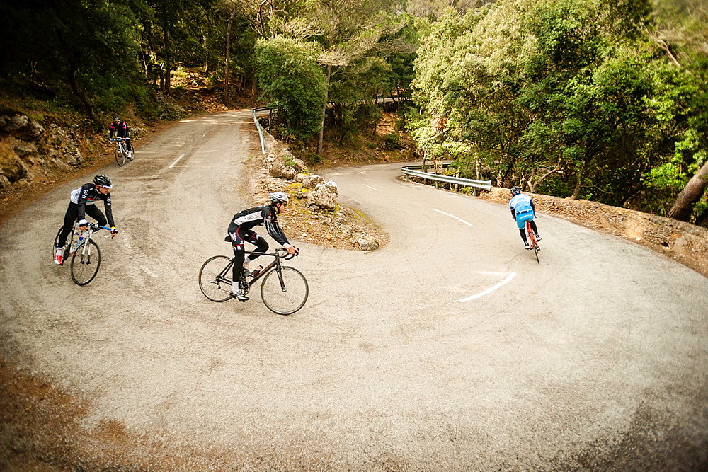 cyclists descending the hill of Honor, Bunyola-Orient Road, Tramuntana, mallorca, Balearic Islands, Spain, Europe