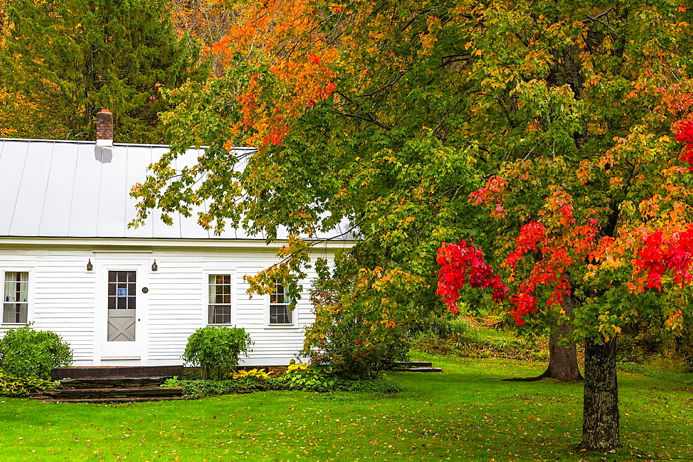 House with colorful trees in Strafford, Vermont, USA