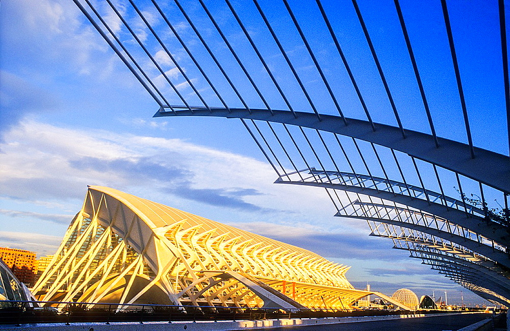 Principe Felipe Sciences Museum and at right the Umbracle,City of Arts and Sciences, by S Calatrava Valencia Spain