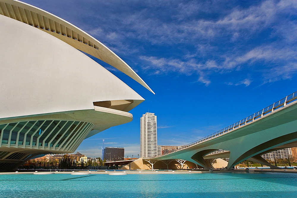 Detail of Palacio de las Artes Reina Sofia,City of Arts and Sciences by S Calatrava Valencia Spain