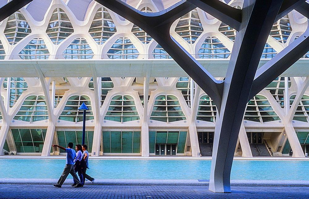 Principe Felipe Sciences Museum,City of Arts and Sciences, by S Calatrava Valencia Spain