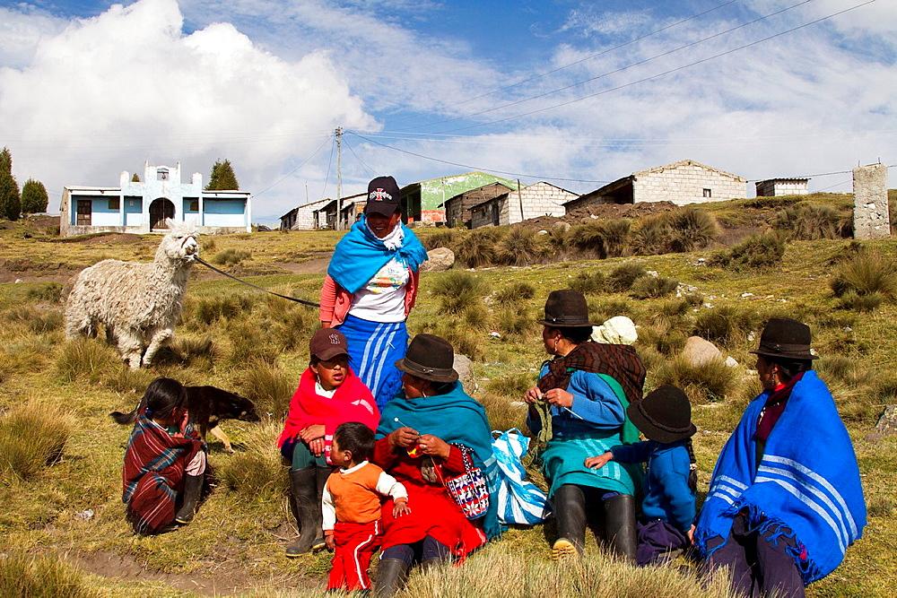 Ecuador, Salinas, 'paramo' upland, women knitting and llama.