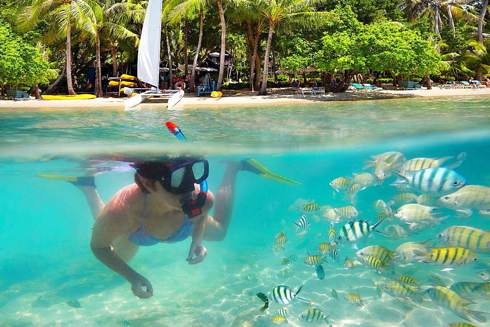 Thailand landscape, underwater sea view of snorkeling woman and fish, Ko Samet Beach, Thailand, Asia - 817-437952