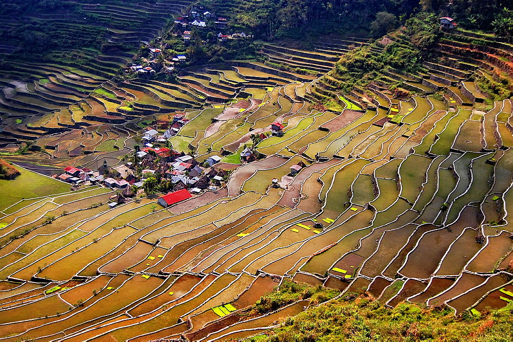 The famous Batad rice terraces amphitheater. Philippines, Luzon, Cagayan valley, Ifugao, Banaue, Batad