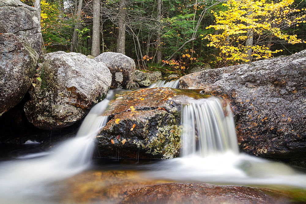 Harvard Brook in the White Mountains, New Hampshire USA during the atumn months.