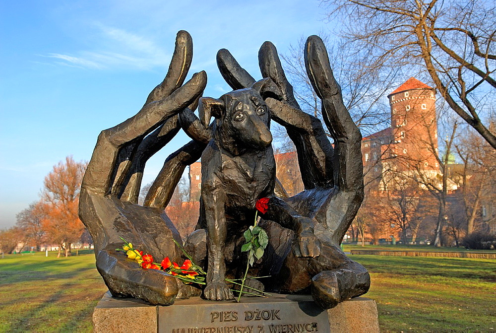 monument of dog Dzok, Wawel Royal Castle, Krakow, Poland, Central Europe
