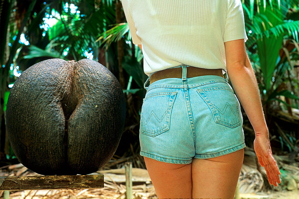 young woman seen from behind and Coco de Mer nut, Lodoicea maldivica, Republic of Seychelles, Indian Ocean