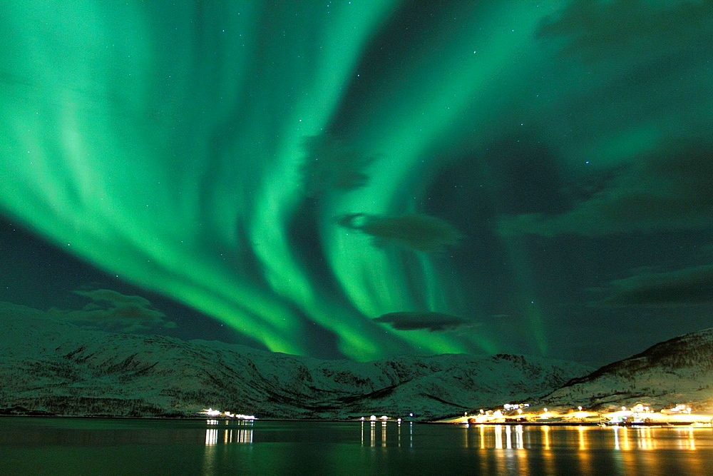 Northern Lights in Norway. - 817-440805