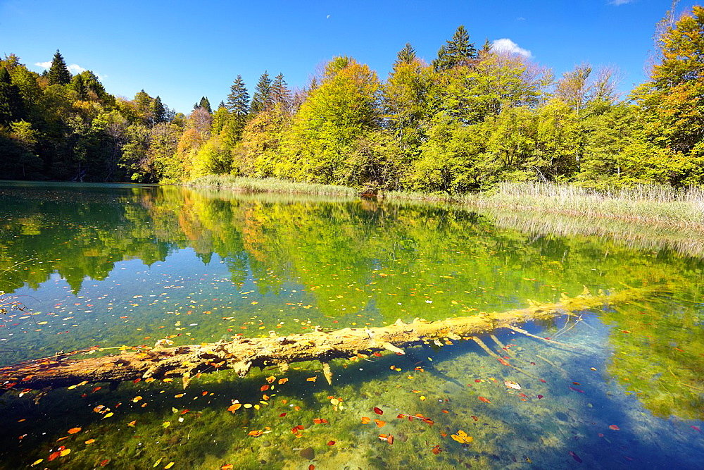 Croatia, autumn landscape of Plitvice Lakes National Park, Plitvice, central Croatia.