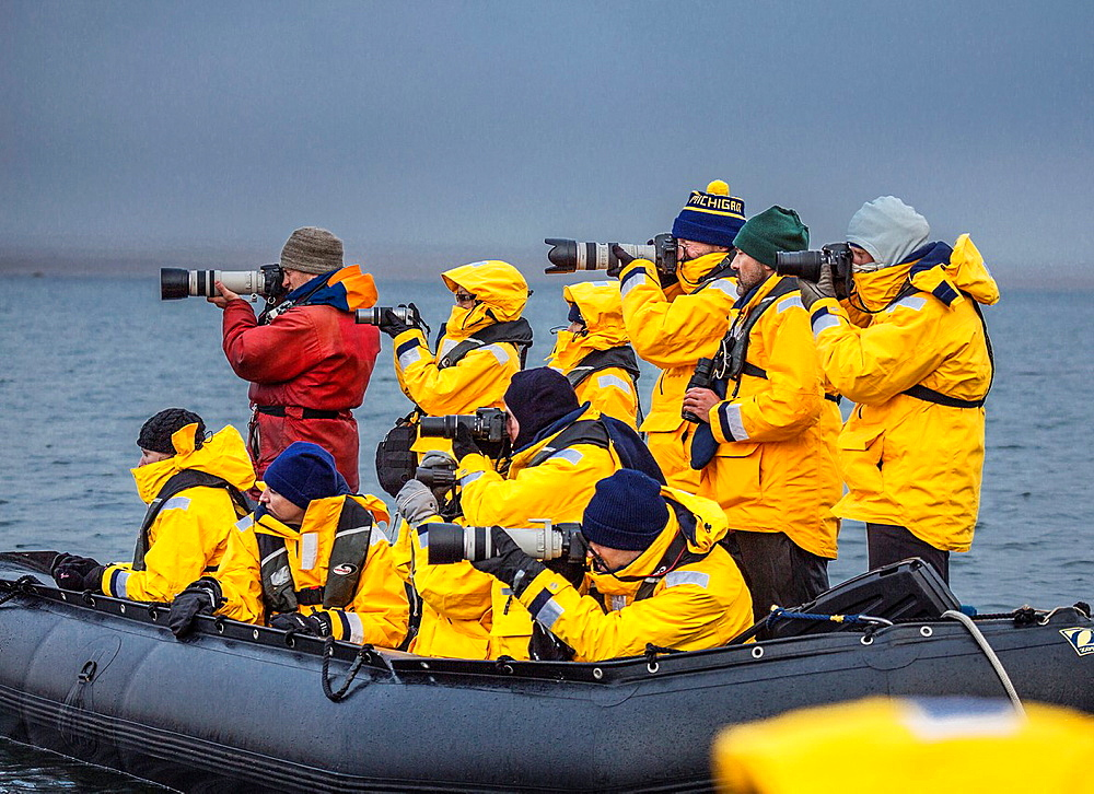 Tourist in Zodiacs watching and photographing polar bears, Svalbard, Norway. - 817-441501