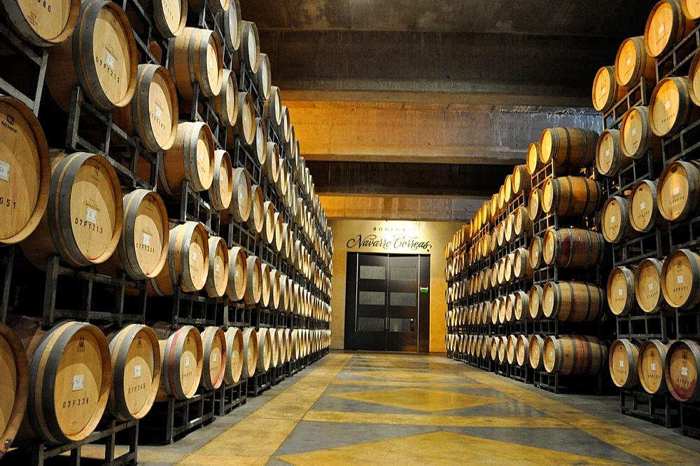 Wine is stored in ten rows of oak barrels, Mendoza, Argentina.