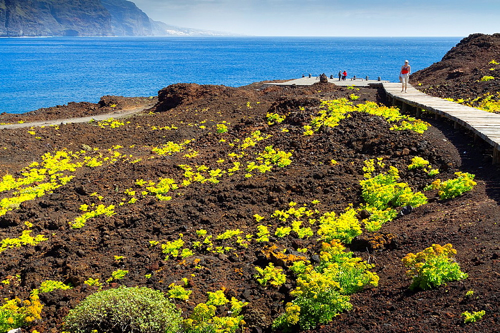 Punta Teno. Tenerife, Canary Islands, Atlantic Ocean, Spain.