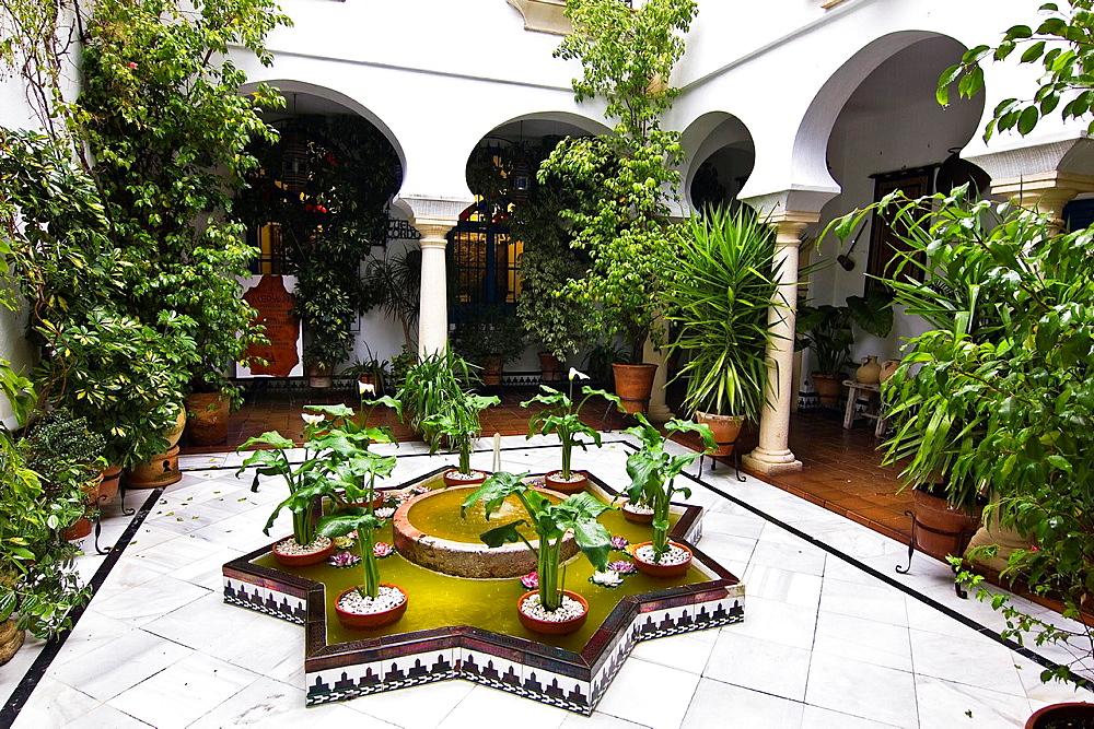 Typical courtyard, Cordoba, Andalucia, Spain, Europe.